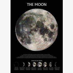 Αφίσες Διάστημα - The Moon, phases of the moon