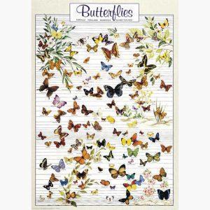 Εκπαιδευτικές Αφίσες - Butterflies