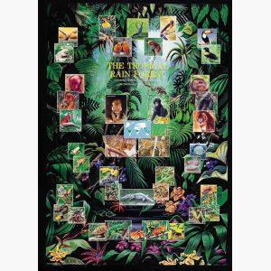 Εκπαιδευτικές Αφίσες - The Tropical Rain Forest