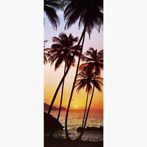 Φωτοταπετσαρίες - Sunny Palms
