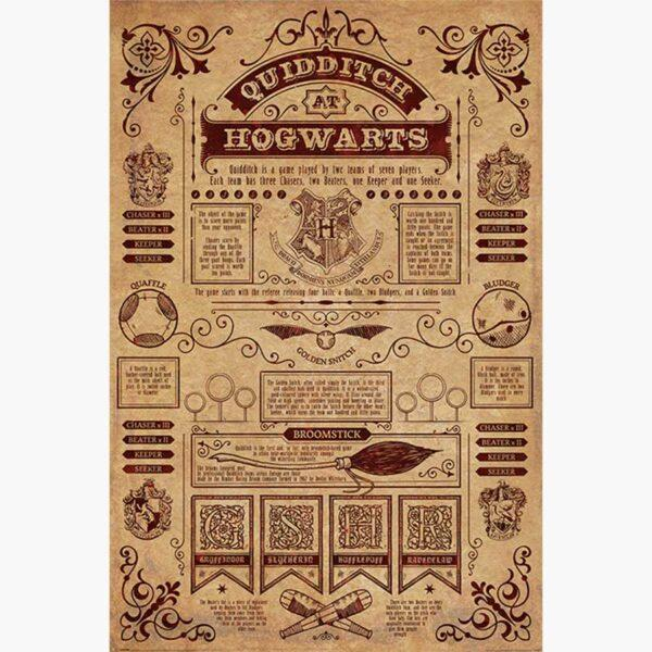 Κινηματογραφικές Αφίσες - Harry Potter (Quidditch At Hogwarts)