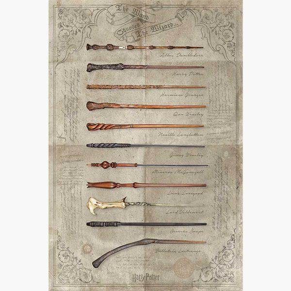 Κινηματογραφικές Αφίσες - Harry Potter (The Wand Chooses The Wizard)